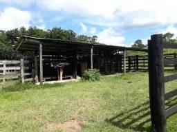 Fazenda 156 hectares - rio manso - Cuiaba 90 km