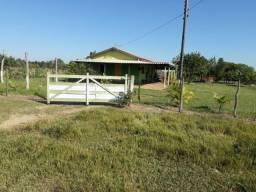 Sítio à venda com 2 dormitórios em Sidrolândia, Sidrolândia cod:BR2CH11632