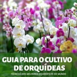 Apostila Digital Guia para Cultivar Orquídeas