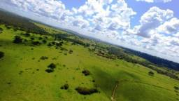 Fazenda em Ipameri (Soja e Pasto ; Beira Asfalto)