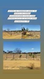 Título do anúncio: Terreno de chácara na ponta da serra Petrolina