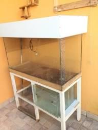 Aquario tampa movel metalon
