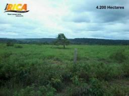 Fazenda rural à venda com 4.200 hectares em Humaitá CódFA0023