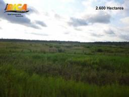 Fazenda rural à venda em Canutama com 2.600 Hectares-Cód FA0010
