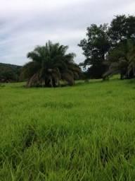 Fazenda 116.5 alqueires em Barrolândia Serra da lopa