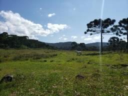Fazenda à venda em Rio Rufino, Urupema