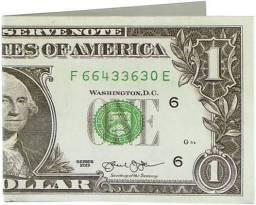 Carteira dollar. R$ 10