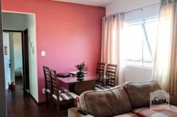 Título do anúncio: Apartamento à venda com 2 dormitórios em Jardim américa, Belo horizonte cod:258834