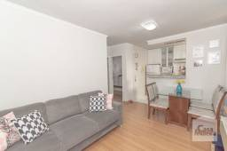 Apartamento à venda com 2 dormitórios em Minas brasil, Belo horizonte cod:253666