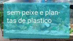 Aquario 200lt sem peixe e com plantas de plástico