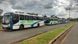 Vendo frota de ônibus urbano.