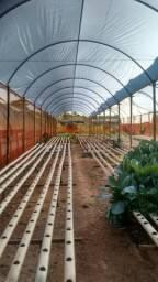 Estufas para hidroponia completas, desmontadas 759,00 m2