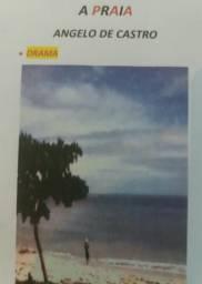 Livro A Praia autor Angelo De Castro