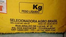 Brachiarao em ALMENARA MG vendo sacos de 20 kilos