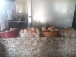 Ovos de Capoeira Novinhos