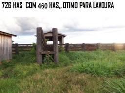 726 Hectares com 460 hectares de pasto JuaraMT
