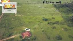 Fazenda a venda na beira da BR 364 sentido Cuiabá, 64 km de Porto Velho-RO
