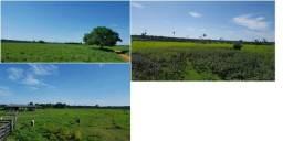 Fazenda dupla aptidão em Itaúba - F0028