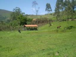Chácara em Monteiro Lobato / 30000 m² / +Mina D'Água / +Tanque de Peixe