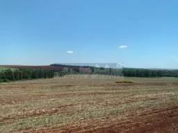 8076 | Fazenda à venda em ENGENHEIRO BELTRÃO