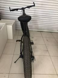 Bike fat 29