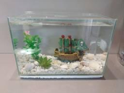 Aquário com pedras, navio e plantas artificiais