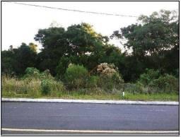 Terreno à venda, 363 m² por R$ 87.000,00 - Loteamento Verde Vale - Treze Tílias/SC