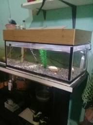 Vendo aquario completo.