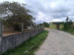 10.000 m² em traíras com duas casas, fruteiras