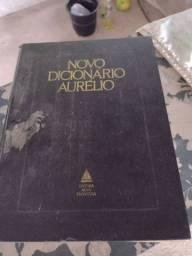 Dicionário Aurélio antigo para colecionador
