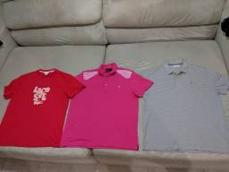 Camisas do jacaré 100%originais m g gg ggg