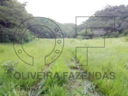 Fazenda região de Miranda MS