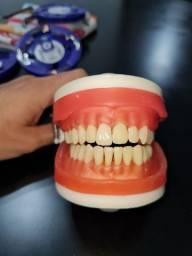 Título do anúncio: Manequim Dentistica ProNews + Dentes