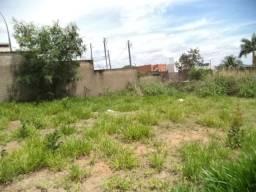Terreno para alugar em Pacaembu, Divinopolis cod:9241