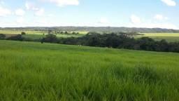 8271 | Fazenda à venda com 1 quartos em ZONA RURAL, PARAÚNA