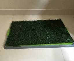 Sanitário para cachorro com graminha