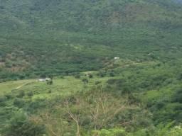 Vendo excelente fazenda Ubaira