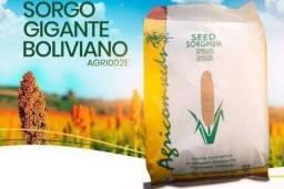 Título do anúncio: Sorgo gigante boliviano saco com 10 KG