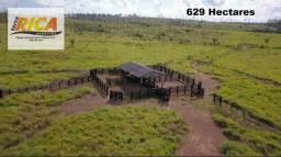 Fazenda com 629 Hectares próximo a Jaci-Paraná a venda -Área Rural de Porto Velho