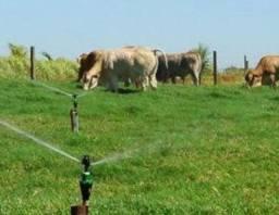 irrigação em pastagens e plantios