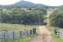 8076 | Fazenda à venda em RURAL, MATO GROSSO DO SUL
