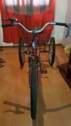 Bicicleta/Triciclo
