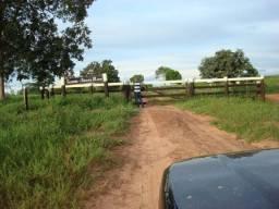 8271   Fazenda à venda com 1 quartos em ZONA RURAL, PEDRO GOMES