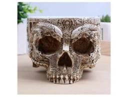 Cranio Decoração Caveira Cabeça Osso Corpo Humano Esqueleto