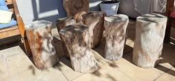 Troncos de madeiras
