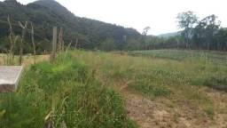 Terreno 12,5 x 200 mts em santa Tereza-urubici