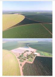 Vd linda Fazenda sul de MG