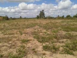 Terreno para granja medindo 100 x 120