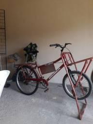 Bicicleta carqueira