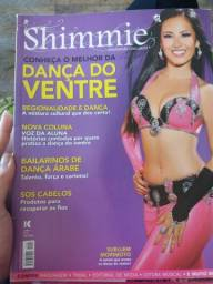 REVISTA SHIMMIE 2011 - Ano 1 - N.04